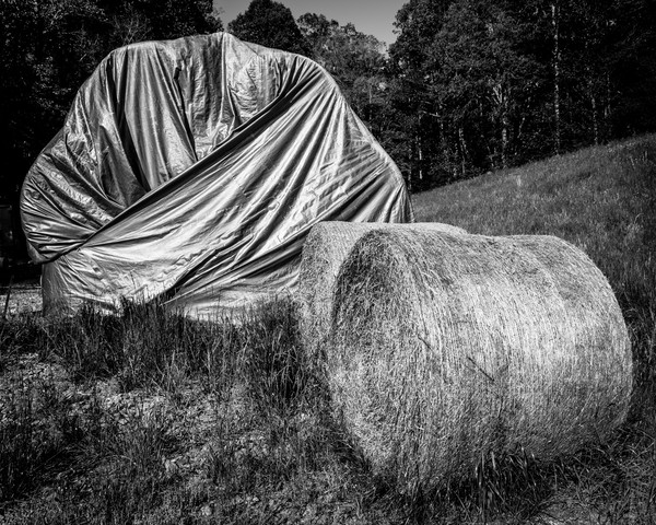 Provisions is a fine art black and white image