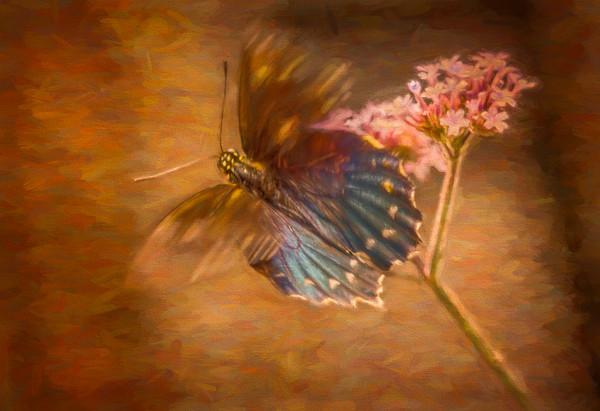 Butterfly Flower Regal Texture Painting|Wall Decor fleblanc