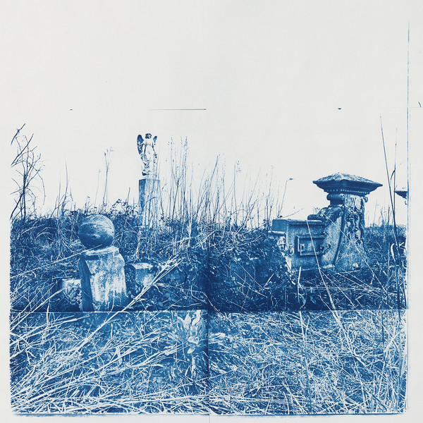 Hand-printed Cyanotype Photography by Beverly Buys.