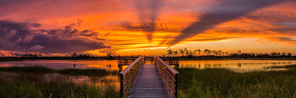 Florida Photography landscape fine art images for sale by David Knight