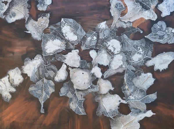 Decaying Leaves by Briar Emond | SavvyArt Market original abstract painting
