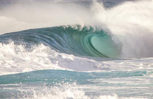 Backdoor Empty, Hawaii Surf Photography Print