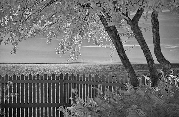 Mackinac Bridge Island View
