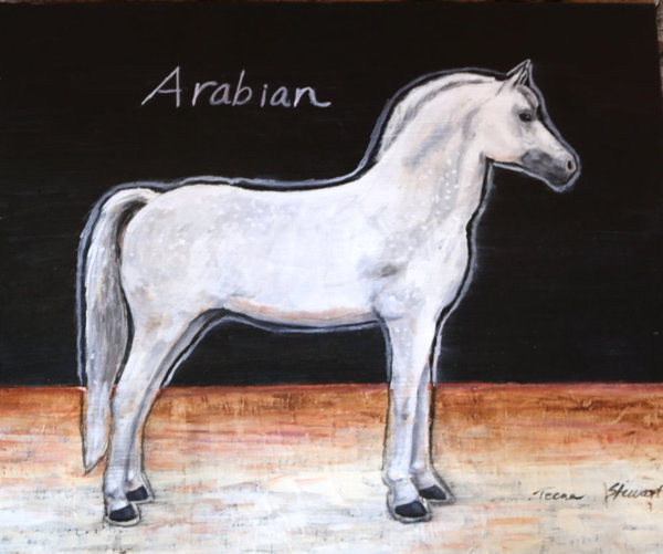 White-Arabian-Horse, Painting of a White Horse, Art and Paintings for Sale by Teena Stewart of Serendipitini Studio