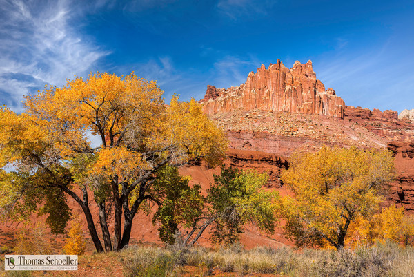Capitol Reef National Park/The Castle and fall foliage fine art nature prints