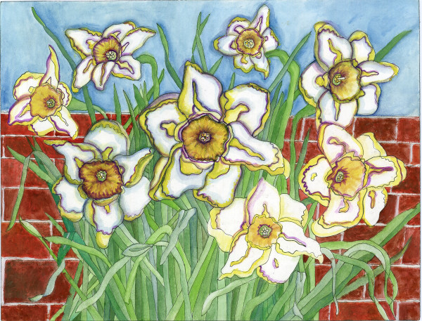 Daffodil Universe