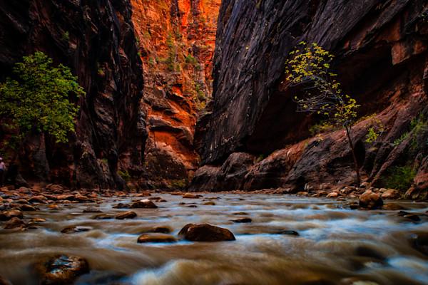The Narrows #1 Fine Art Photograph by Robert Lott