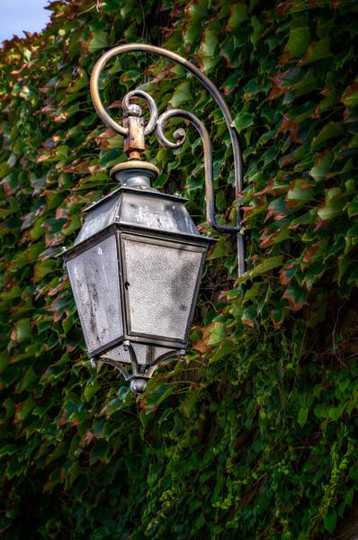 Antique Lamp Lantern Wall Decor Brass|Wall Decor fleblanc