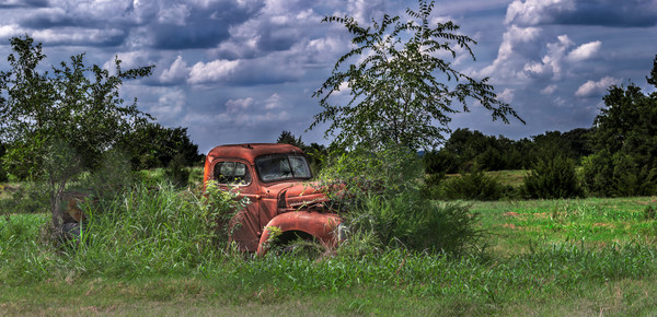 International Truck 1940 Neglected Pano|Wall Decor fleblanc