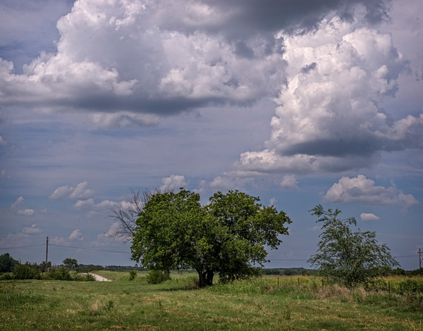 Pasture Clouds Country Road Ranch|Wall Decor fleblanc