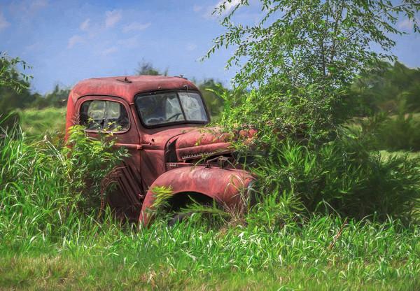 International Truck 1940 Farm Pasture|Wall Decor fleblanc