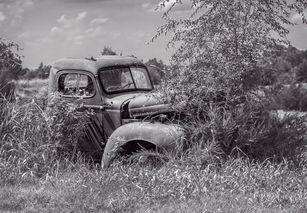 Antique Truck 1940 Farm Vehicle Pasture|Wall Decor fleblanc