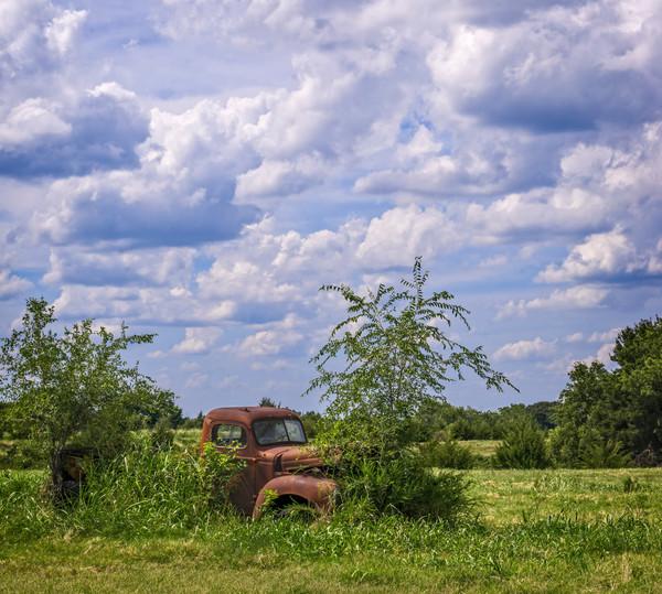 International Truck 1940 Ranch Pasture|Wall Decor fleblanc