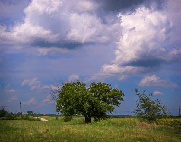 Pasture Clouds Country Road Painting|Wall Decor fleblanc