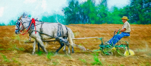 Mule Team Vintage Plowing Farm Painting|Wall Decor fleblanc