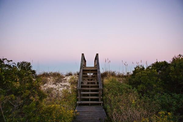 stairs over dunes beach art print