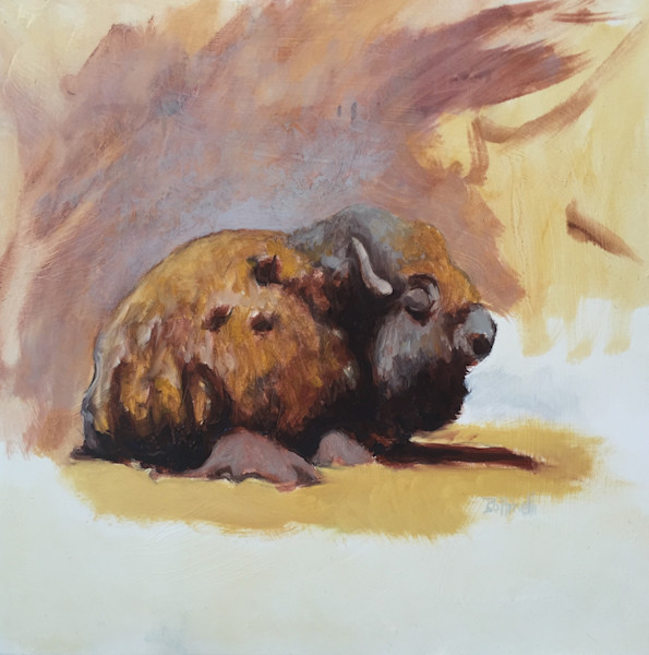 Sleeping Bison - Study
