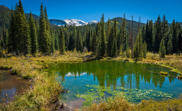 Alpine Ponds off CR12 Crested Butte Colorado - Snow Capped Carbon Peak