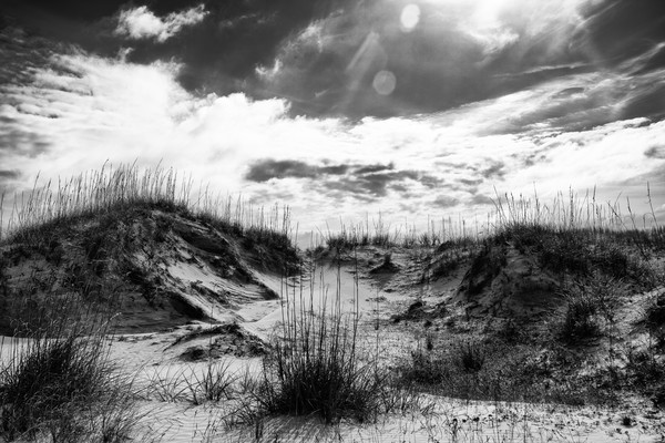 Black and White Oceanscapes