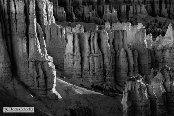 Bryce Canyon Silent City/Amphitheater B&W fine art print/Nature photography