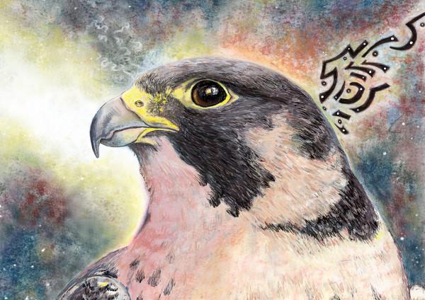 Peregrine Falcon Art