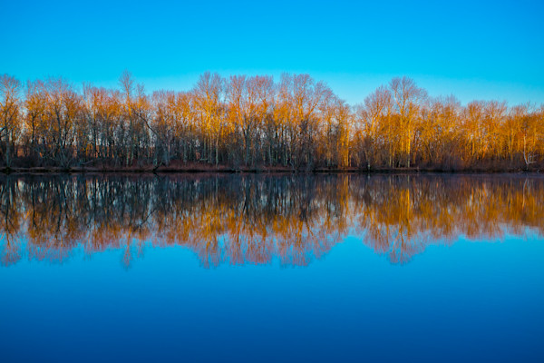 Fine Art Photograph - Blue Skies on Beautiful Fall Morning