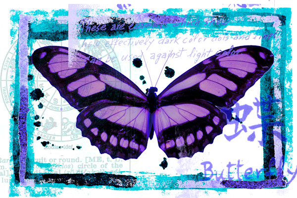 Butterfly No.26