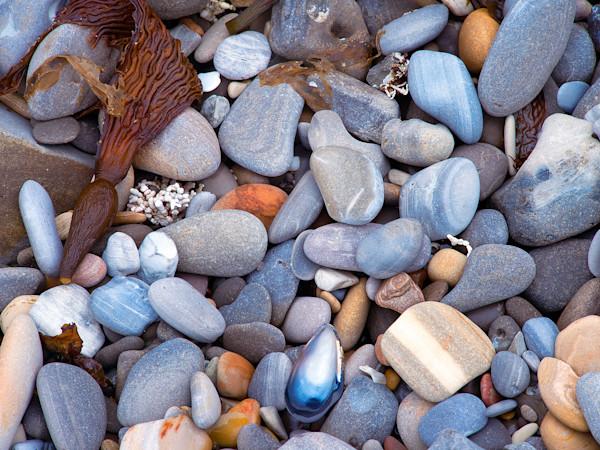 Seashore Stones