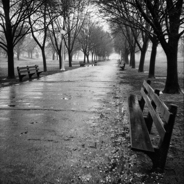 Rainy Day Lincoln Park Path