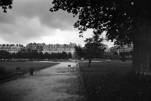 Le jardin des Tuileries, Paris, France
