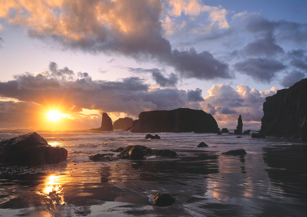 Sea stacks on Bandon Beach at sunset, Bandon, Oregon