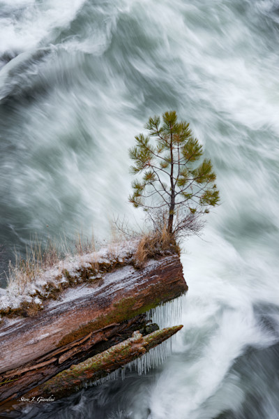 Natural World Photographs of Oregon & National Parks Available for Sale