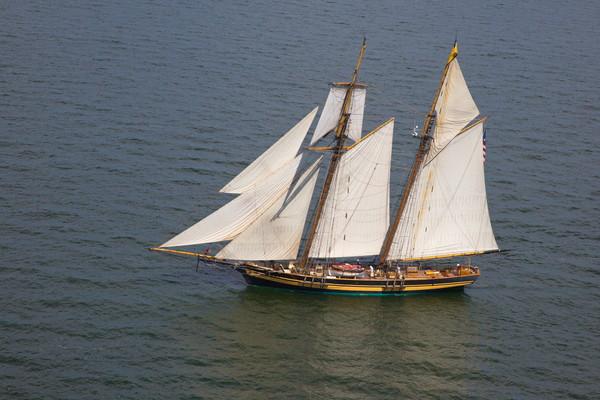 Tall Ship -6182