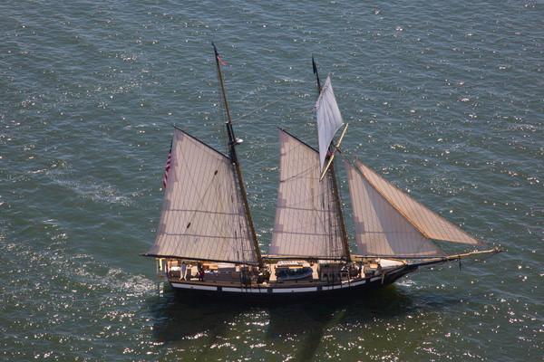 Tall Ship -6194