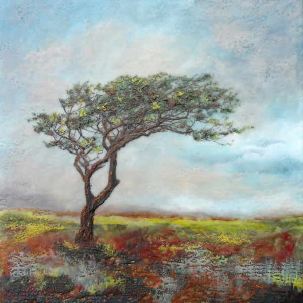 Looking East - Abstract Tree Paintings -  Wall Art Sale