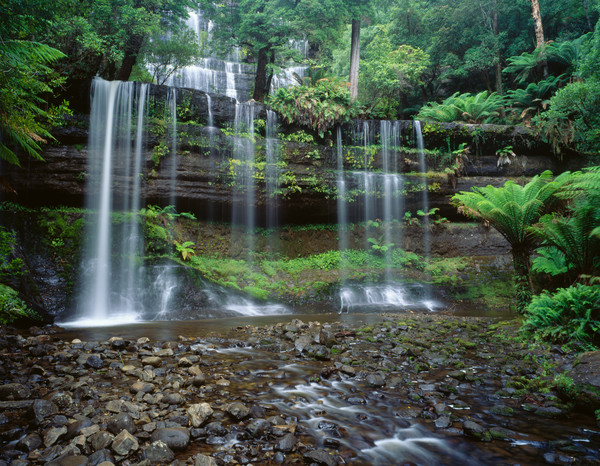Russell Falls in Mt. Fields National Park, Tasmania, Australia