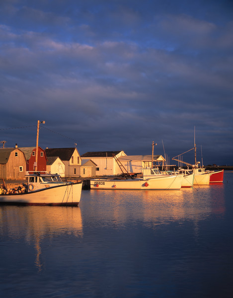 Lobster boats docked in Darling Basin at sunset, Prince Edward Island, Canada