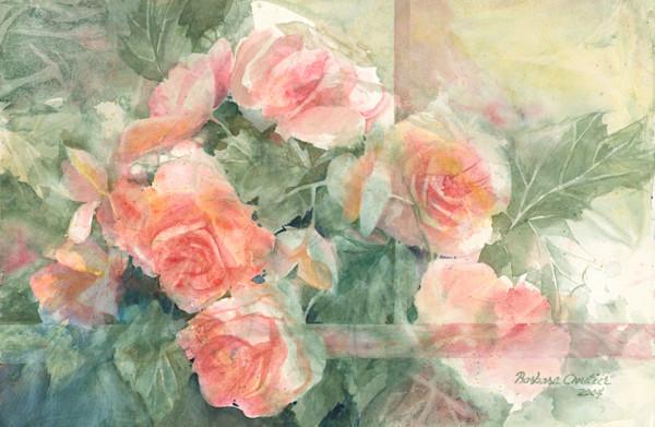 5-Roses