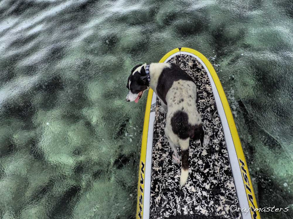 SUPing in the Rain
