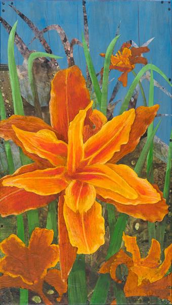 Orange Day Lily #1