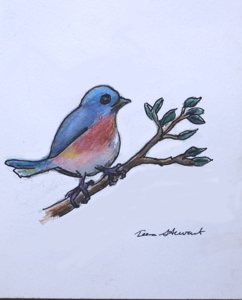 Blue-bird, Blue Bird watercolor,  Fine Art and Paintings for Sale by Teena Stewart of Serendipitini Studio
