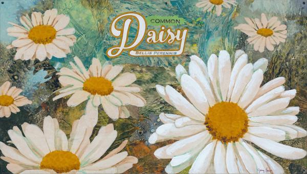 Goring Daisy #1