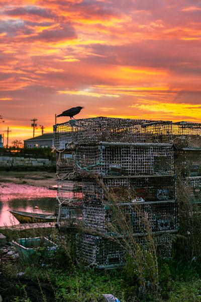 Fine Art Photograph - As The Crow Flies