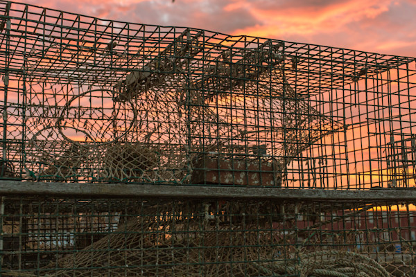 Fine Art Photograph - Lobster Traps at Sunset