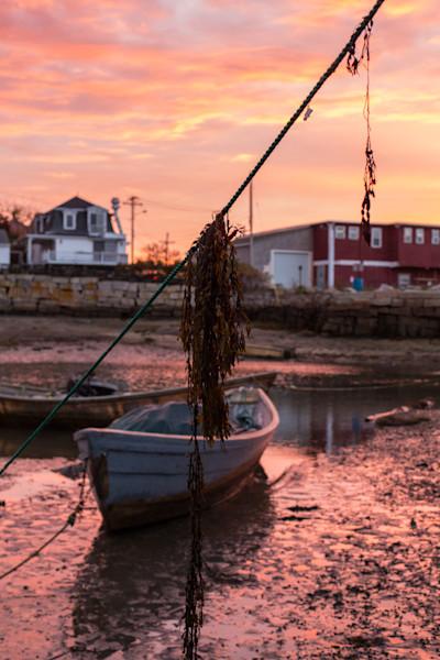 Fine Art Photograph - Fishing Line