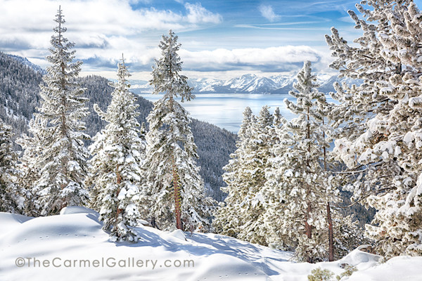 Snowy trees and Lake Tahoe on a Winter Morning prints