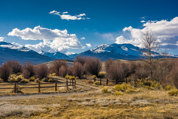 Colorado Landscape Photography of Ranch Road Mt Elbert, French Mountain, Mt Massive
