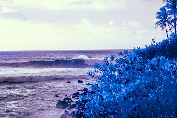 North Shore, Infrared, Surf