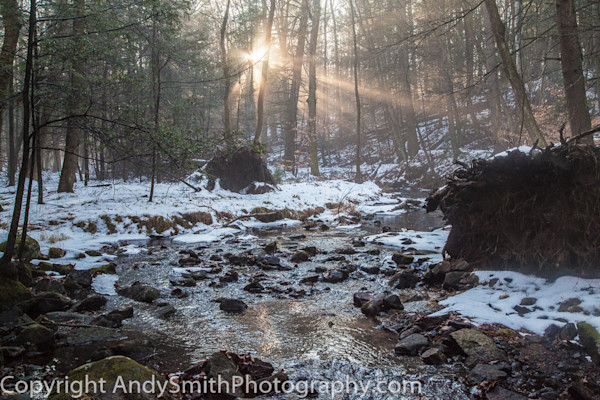 fine art photograph of Christmas Eve Along Stony Brook