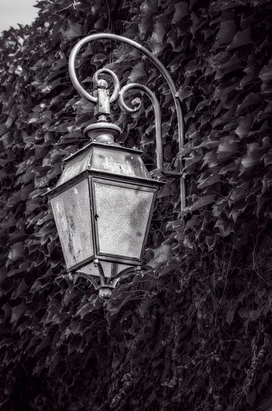 Vintage Old Lamp Lantern Wall Decor Brass|Wall Decor fleblanc